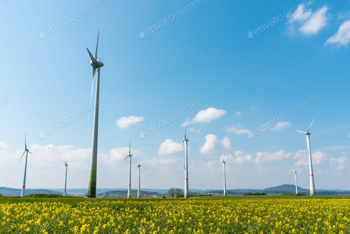 Wind farm in a blooming rapeseed field