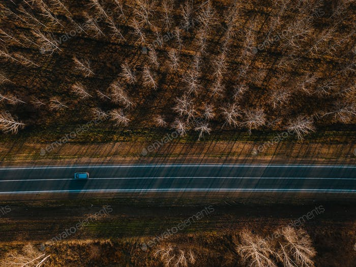 Aerial view of car on the road through autumn forest