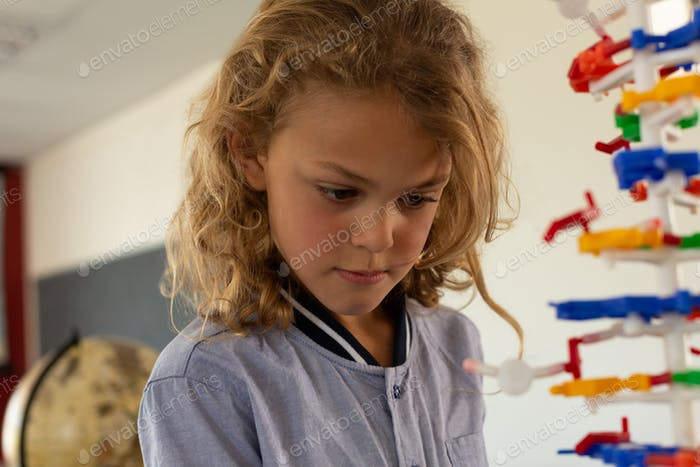 Close-up of a mixed -race schoolgirl looking at a DNA model in classroom at elementary school
