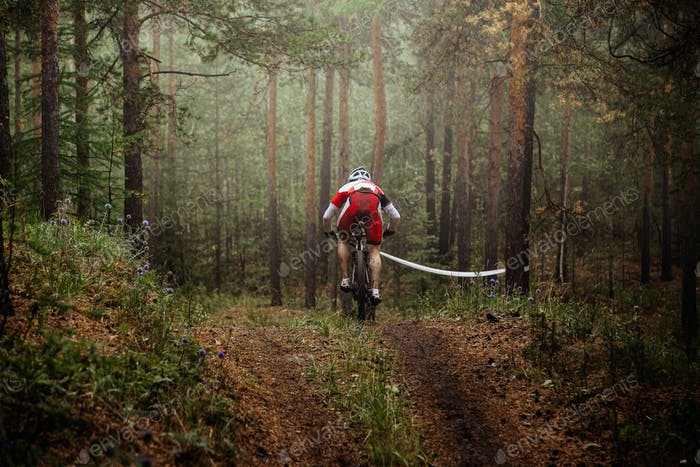 Rider Mountain Bike