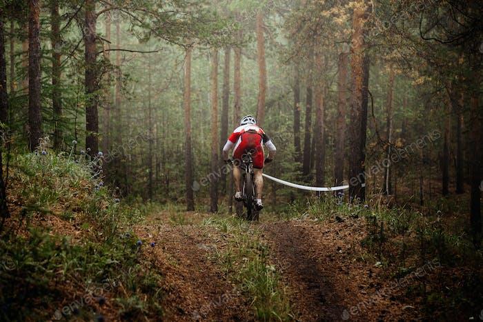 Rider Mountainbike