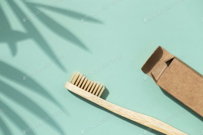 Bamboo Toothbrush with Plant Shadows.