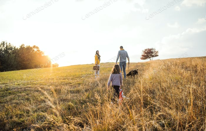 A rear view of family with child and a dog on a walk in autumn nature at sunset.