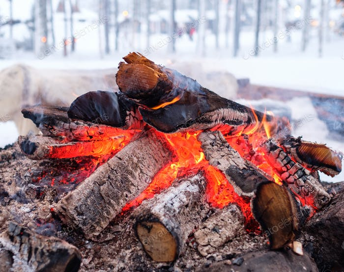 Bonefire in a winter landscape