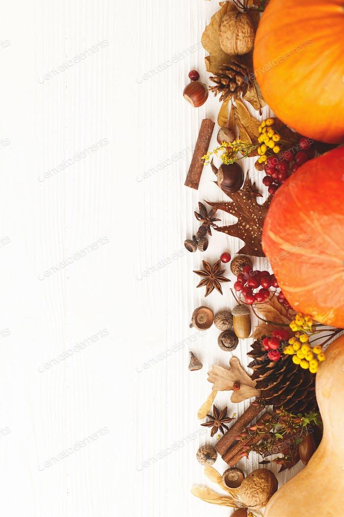 Happy Thanksgiving, greeting card flat lay. Pumpkins, anise, cinnamon, autumn leaves