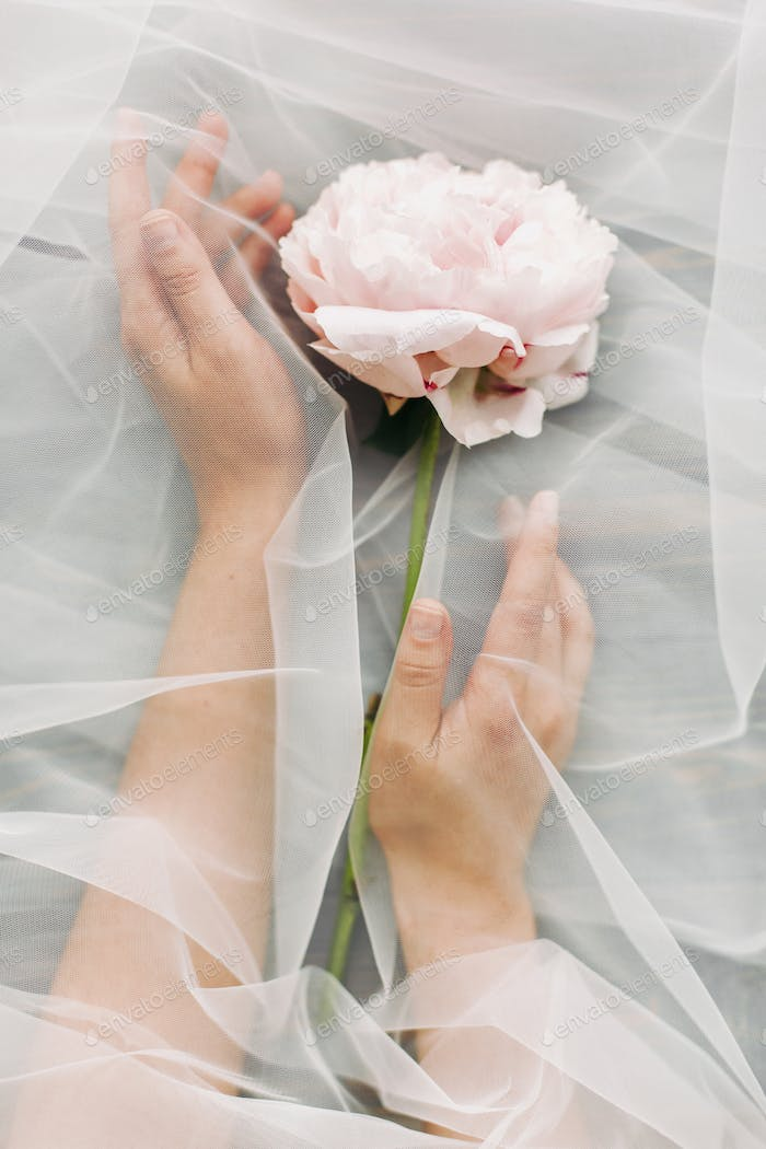 Hands under tulle gently holding peony flower