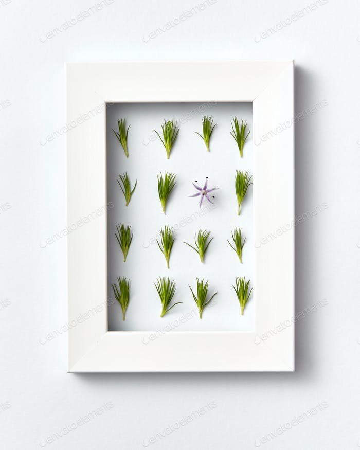 Plant frame with green pine needles pattern on a light background. Greeting card