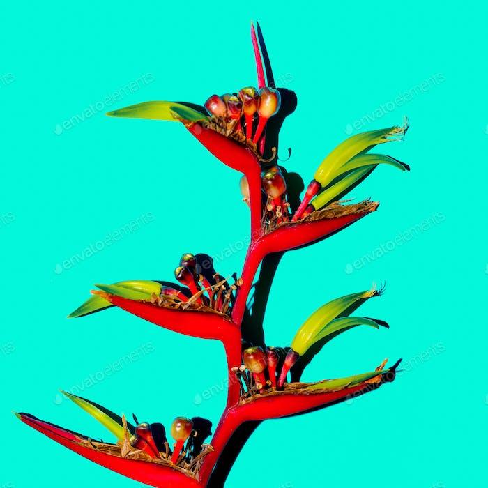 Tropical red flower on blue. Minimal fashion art design