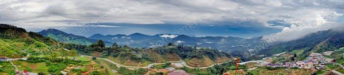 Malaysia, panorama of tea plantations in Cameron Highland