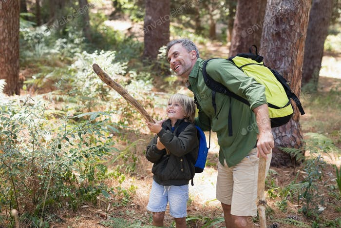 Father and son enjoying nature while hiking in forest