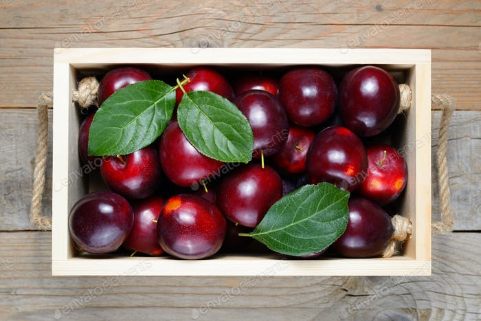 Plums in wooden box close-up
