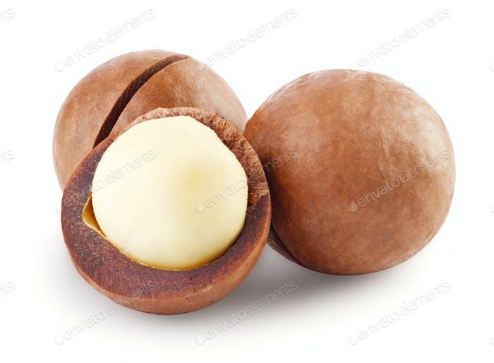 Whole and open australian macadamia nut