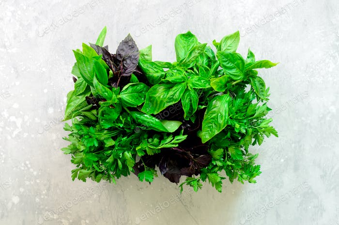 Green fresh aromatic herbs - thyme, basil, parsley on gray background. Banner collage, food frame