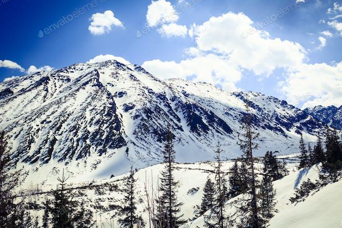 Mountain beautiful landscape winter sunny day