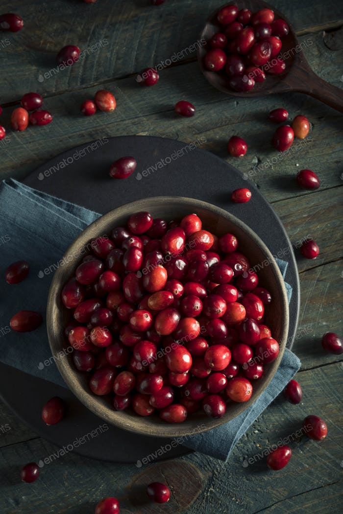 Raw Organic Red Cranberries