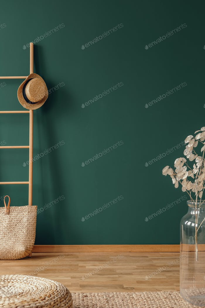 Empty green wall in elegant natural interior with wooden ladder and glass vase with flower
