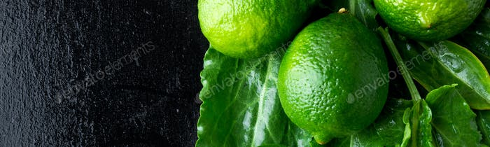 Banner of Wet spinach and lime on black background.