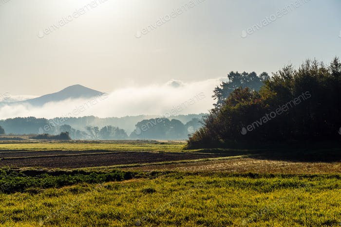 Beautiful morning landscape