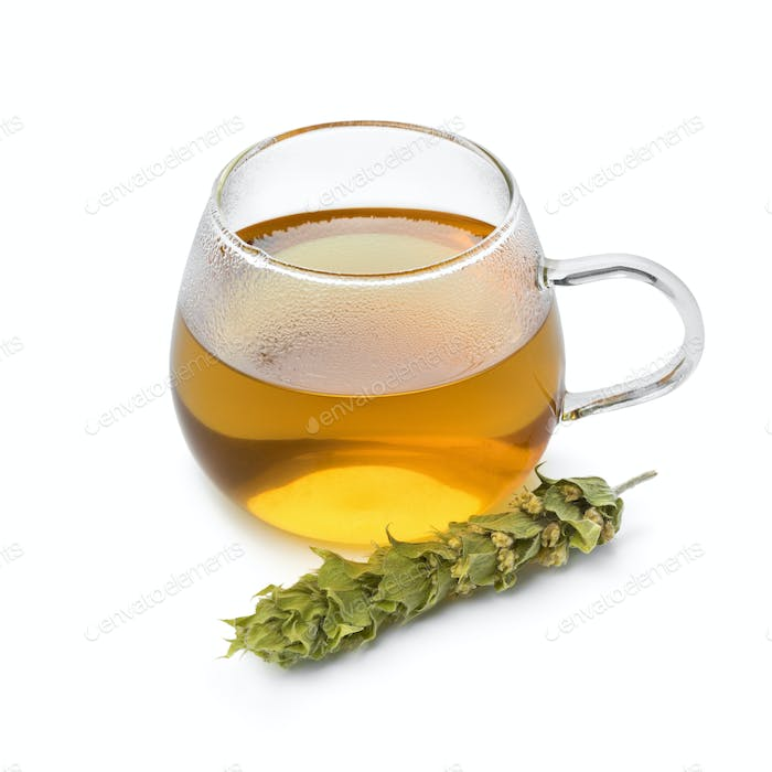Glass of tea with twigs of dried green ironwort