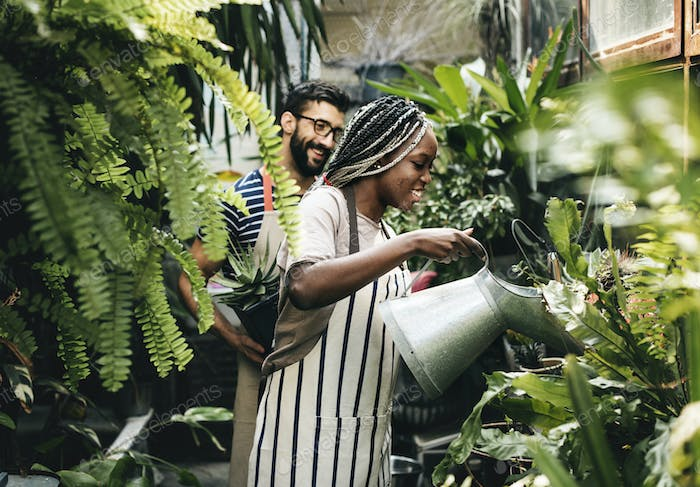 Couple taking care of the plants