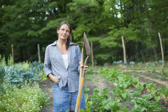 A woman working in an organic garden, standing among the vegetable crops. Holding a spade and hoe.