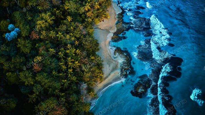 Aerial view of a tropical coast. Ocean scenery surrounded by palm trees on a beach with white sand