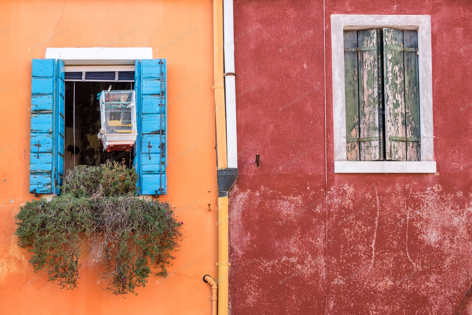 Colorful walls and windows on Burano island, Venice photo by martinm303 on  Envato Elements