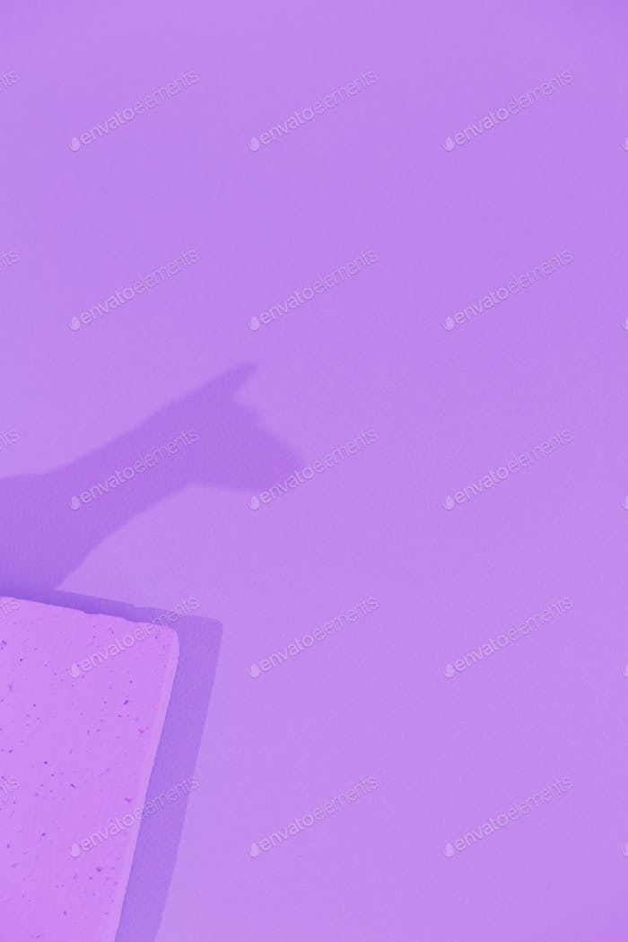 Lama shadows. Minimal still life art. Monochrome trendy colours.  Purple aesthetic