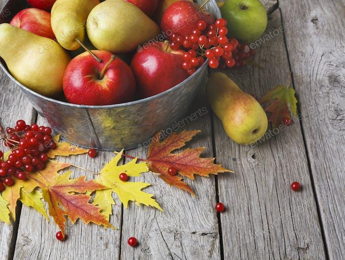 La cosecha de otoño y el Fondo de la tarjeta de acción de gracias