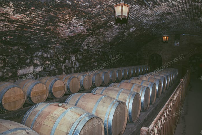Wine barrels in a old cellar at winery. Wooden barrels of wine in vineyard