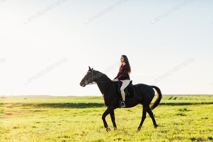 Young attractive girl riding on a bay horse.