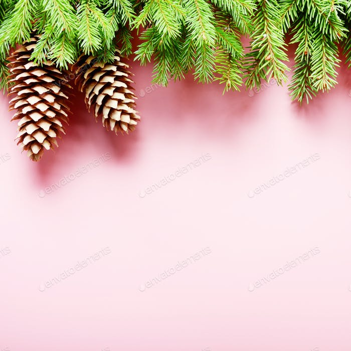 Flat lay design of Christmas greeting card of fir twigs and cone