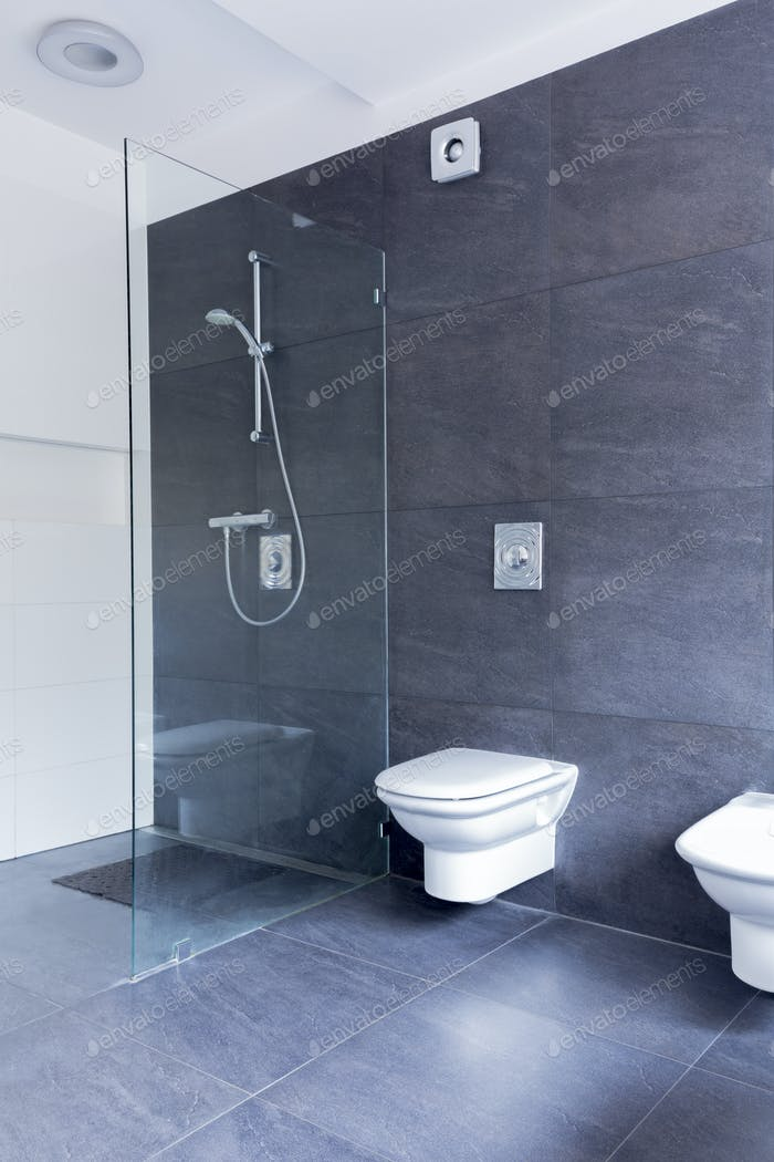 Ascetic bathroom combining glass and granite