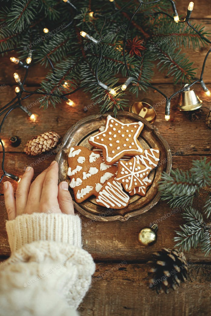 Hand holding plate with christmas gingerbread cookies, fir branches, lights on rustic table
