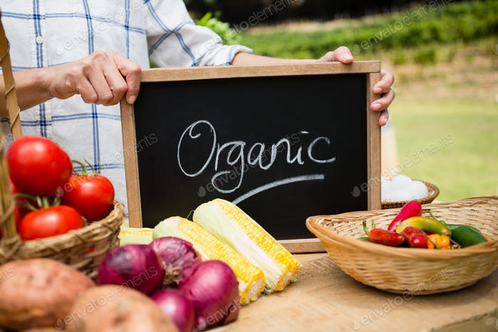 Mid section of woman holding slate with text at vegetable stall