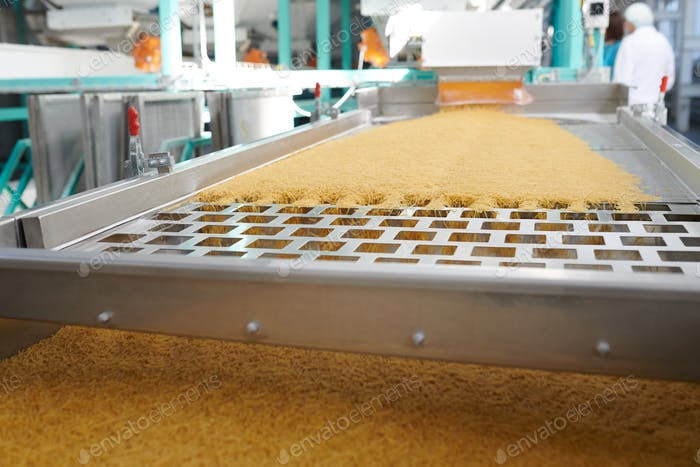 Macaroni Production in Food Factory