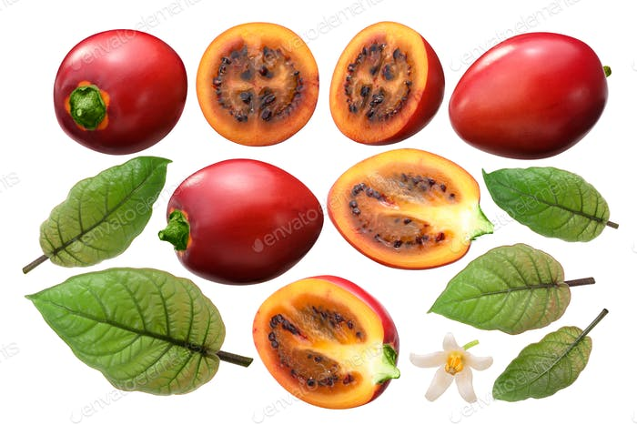 Tamarillo s. betaceum elements, paths