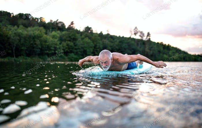 Senior man on paddleboard on lake in summer, swimming