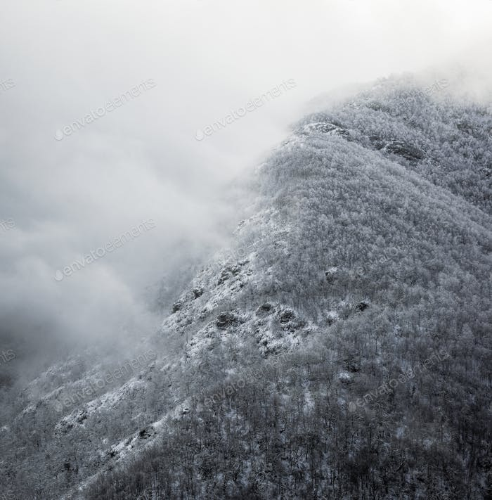 Fog and snow on a mountain covered with oaks