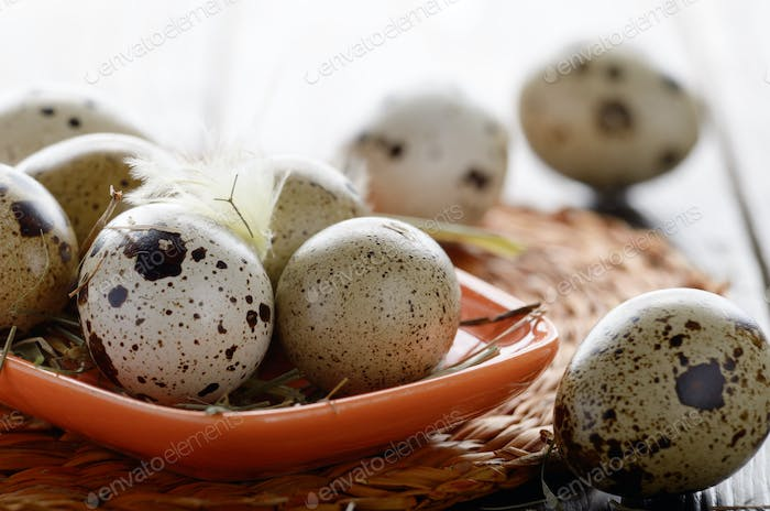 Fresh organic quail eggs in orange clay plate on wooden rustic k