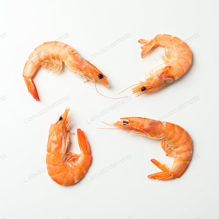 Flat lay with shrimps on white background, top view