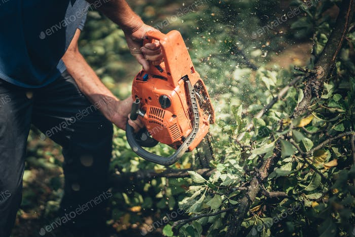 Lumberjack male worker cutting firewood in forest with a professional chainsaw