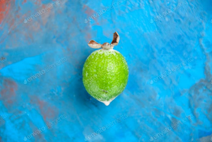 Top view of fresh natural local green feijoa on blue background