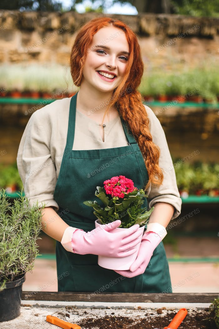Pretty smiling lady in apron and pink gloves holding in hands beautiful flower in pot