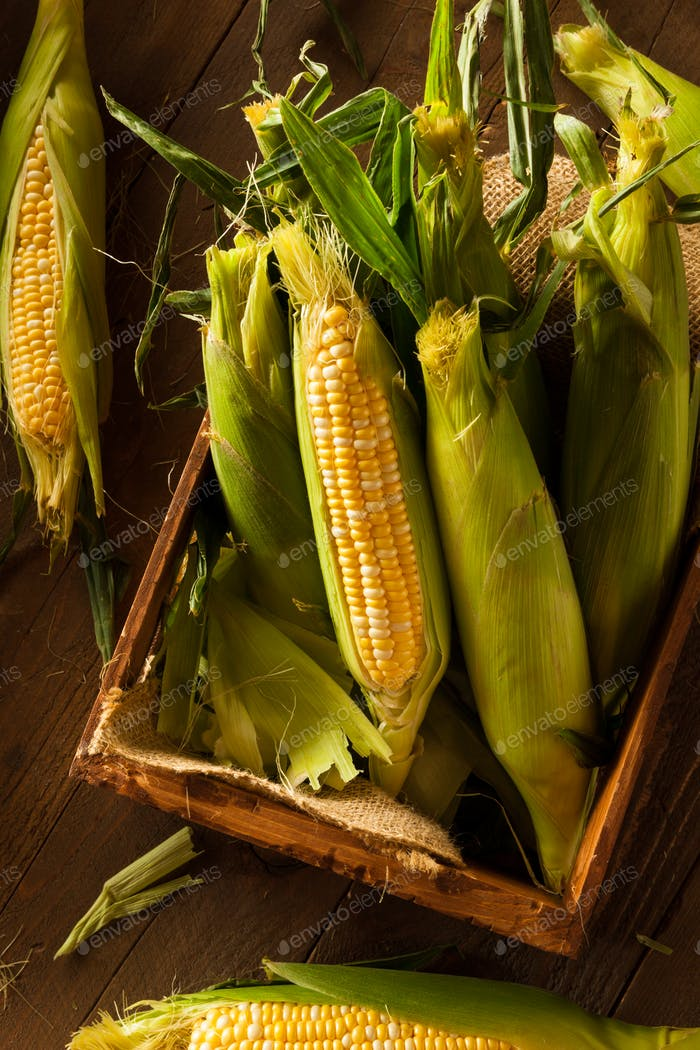 Raw Organic Yellow Seet Corn