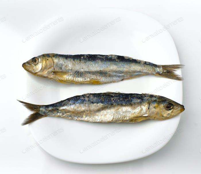 two salt herring sardines, ordered in white dish