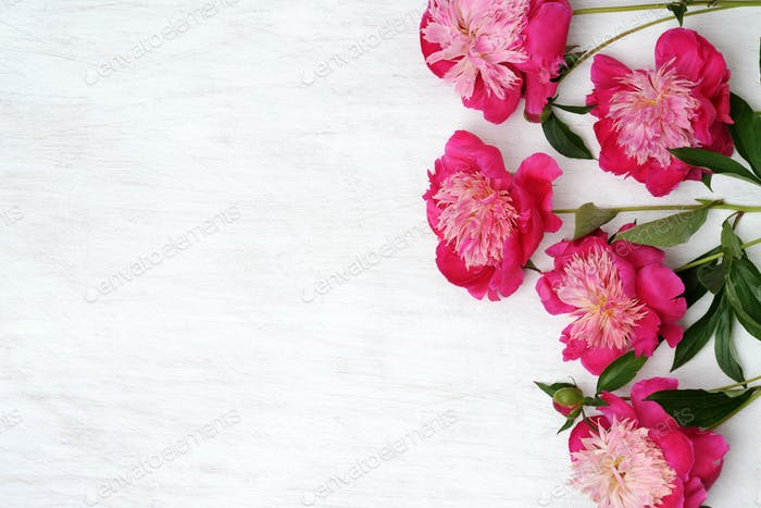 floral arrangement of peonies