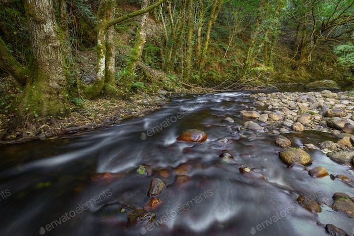 Bett aus Kieselsteinen im Boden eines Flusses