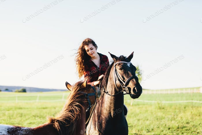 A girl sitting on a bay horse and the other horse approaching her.