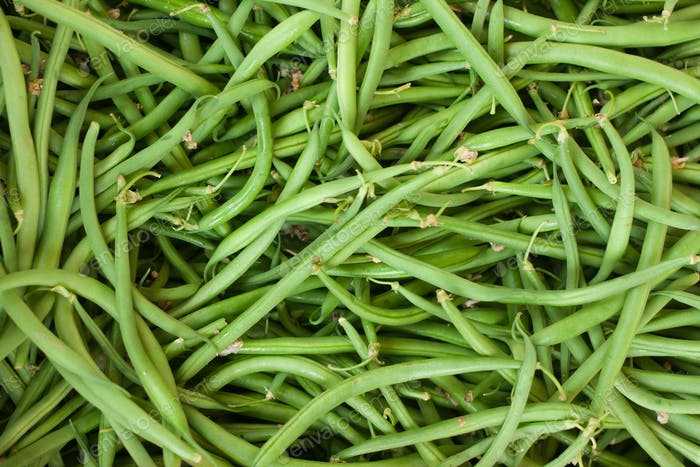 Fresh green beans on display at an Italian farmers' market
